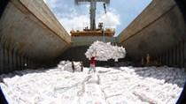 Bộ CT đề xuất bỏ hạn ngạch, cho phép xuất khẩu gạo trở lại bình thường từ 1/5
