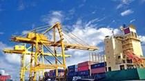 Bộ Công Thương gia hạn thời gian xét chọn Doanh nghiệp xuất khẩu uy tín năm 2019