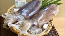 Nguyên nhân nào khiến xuất khẩu mực, bạch tuộc sang thị trường Hàn Quốc giảm sâu?