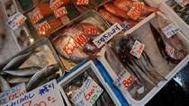 TT thủy sản 8/6: Nhật Bản tiếp tục là thị trường xuất khẩu lớn của nước ta