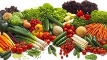 TT rau quả 21/6: Xuất khẩu rau quả trong tháng 5/2020 đạt 1,58 tỷ USD