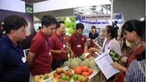 TT rau quả 22/6: Doanh nghiệp gặp khó khi mong muốn đa dạng hóa thị trường xuất khẩu