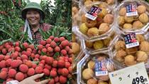 TT rau quả 23/6: Vải thiều đắt hàng tại thị trường Nhật Bản