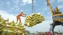 Mặt hàng gạo chiếm 30% tổng kim ngạch xuất khẩu hàng hóa sang Philippines