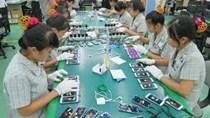 Kim ngạch xuất khẩu điện thoại và linh kiện 7 tháng đầu năm 2020 đạt 26,2 tỷ USD