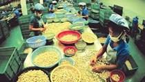 Nhập khẩu hàng hóa từ thị trường Achentina 7T/2020 đạt kim ngạch 1,87 tỷ USD