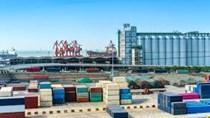 Kim ngạch nhập khẩu hàng hóa từ thị trường Brazil 7T/2020 đạt 1,4 tỷ USD