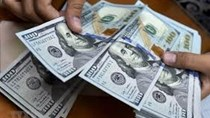 Tỷ giá ngoại tệ ngày 21/9/2020: USD tăng giá