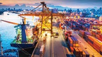 Kim ngạch nhập khẩu hàng hóa từ thị trường AiLen 8 tháng tăng hơn 91%