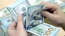 Tỷ giá ngoại tệ ngày 28/9/2020: Tăng giảm trái chiều