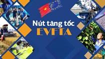 Điều kiện hưởng thuế suất ưu đãi hàng hóa xuất nhập khẩu theo Hiệp định EVFTA