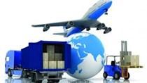 Kim ngạch nhập khẩu hàng hóa từ thị trường Brazil đạt 2,5 tỷ USD