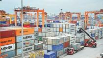 Xuất nhập khẩu năm 2020: Bức tranh nhiều mảng sáng