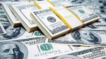 Tỷ giá ngoại tệ ngày 19/01/2021: Các ngân hàng giữ mức giá ổn định.