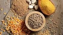 TT ngũ cốc thế giới ngày 16/03/2021: Giá Ngô tăng, đậu tương giữ ổn định, trong khi lúa mì giảm