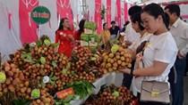 Vải thiều Việt Nam vào Singapore và tái xuất sang nhiều thị trường