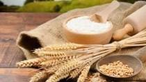 Giá ngũ cốc hôm nay 27/10: Ngô, đậu tương, lúa mì đồng loạt giảm