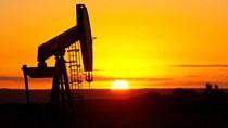 Giá dầu đảo chiều thành công vượt đáy 11 năm