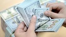 Tỷ giá trung tâm tiếp tục giảm thêm 5 đồng