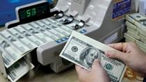 Tỷ giá trung tâm ngày 7/1 tăng vọt lên 21.919 đồng