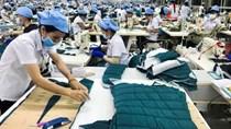 Giao thương sản phẩm giày dép, dệt may, thảm và rèm cửa Việt Nam – Hà Lan