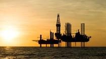 TT năng lượng TG ngày 17/9/2020: Giá dầu biến động trái chiều
