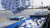 DS Thương nhân được cấp Giấy chứng nhận đủ điều kiện KD XNK gạo đến 5/11/2020