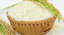 Thị trường lúa gạo ngày 17/11: Giá ổn định