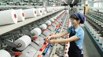 RCEP: Doanh nghiệp Việt phải tăng sức cạnh tranh cả trong nước và xuất khẩu