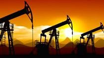 TT năng lượng TG ngày 1/12/2020: Giá dầu giảm, khí tự nhiên tăng