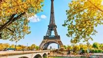 Điện thoại các loại và linh kiện chiếm gần 30% tổng trị giá xuất sang Pháp