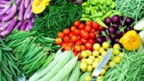 Giới thiệu sách mới: Thị trường rau quả tươi Bắc Âu