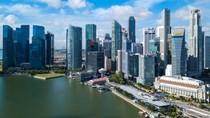 Kim ngạch xuất khẩu sang Singapore đạt 2,76 tỷ USD trong 11 tháng năm 2020
