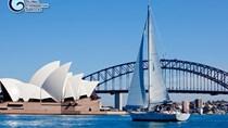 Nhập khẩu than chiếm 35,73% trong tổng kim ngạch NK từ thị trường Australia