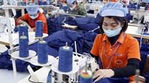 Năm 2021: Nhiều yếu tố trợ lực cho xuất khẩu dệt may sang EU