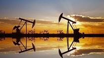 Giá dầu tăng nhẹ