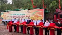 Bộ Công Thương hỗ trợ Sơn La xúc tiến tiêu thụ trong nước và xuất khẩu sản phẩm xoài, nhãn