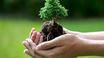 EU ban hành danh mục các sản phẩm, các chất được phép sử dụng trong sản xuất hữu cơ