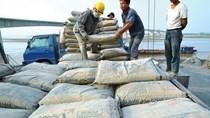 Xi măng tăng trưởng xuất khẩu giữa đại dịch