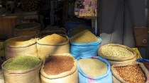 Nông sản Việt Nam được đánh giá tích cực tại thị trường Ma-rốc