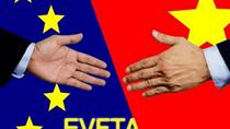 Việt Nam thành lập nhóm tư vấn trong nước (DAG)
