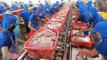 Một số quy định nhập khẩu thủy sản của EU