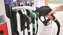 Thông tin điều hành xăng dầu ngày 11/10/2021