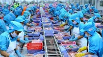 Doanh nghiệp Thụy Điển cần mua một số mặt hàng thủy sản