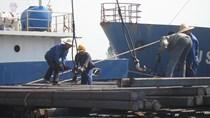 Lượng sản xuất và nhập khẩu sắt, thép 10 tháng đầu năm tăng nhẹ