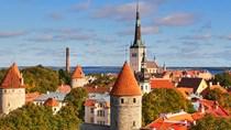 Phần Lan- thị trường tiềm năng cho hàng xuất Việt Nam