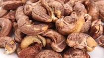 Doanh nghiệp Ấn Độ cần nhập khẩu hạt điều thô