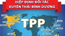 Quy định về quy tắc xuất xứ hàng hóa trong TPP