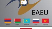 Hiệp định VN-EAEU tạo cơ hội tốt cho XK thủy sản sang Liên minh Kinh tế Á-Âu