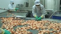 Doanh nghiệp được đưa hàng thủy sản nhập khẩu về kho bảo quản để kiểm dịch